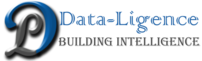 DATALIGENCE INFOTECH PRIVATE LIMITED LOGO